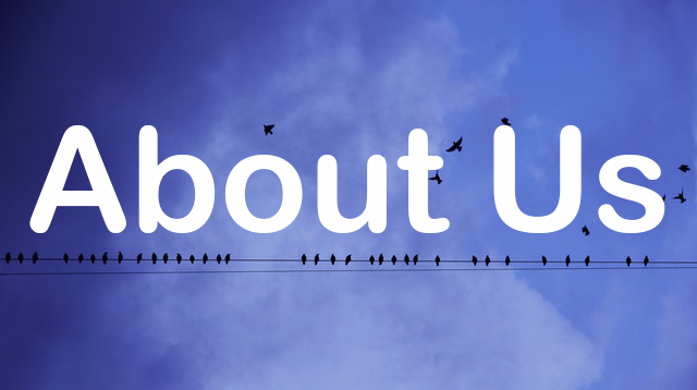 About Us - Text with birds in the background